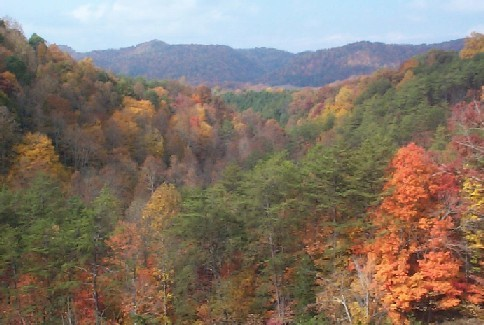 Fall in the Tennessee Appalachian Mountains